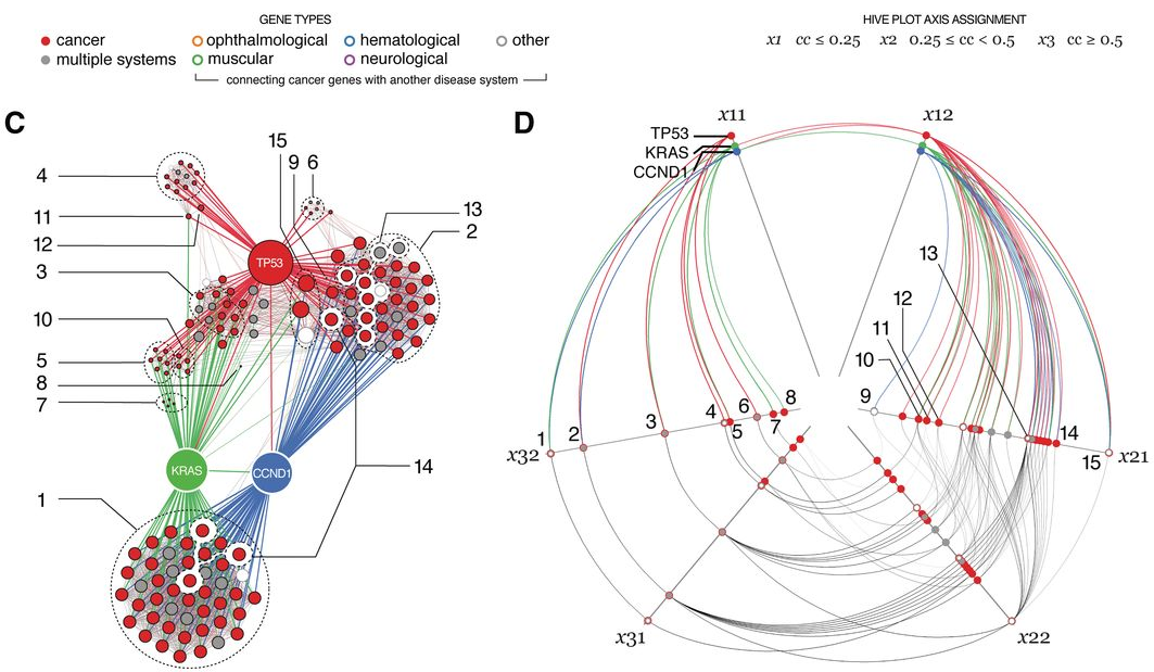 Fuente: Krzywinski et al, Hive plots—rational approach to visualizing networks.